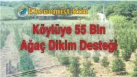 Köylüye 55 Bin Lira Hibe Ağaç Desteği