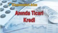 Türkiye İş Bankası Anında Ticari Kredi Nedir? Nasıl Alınır?